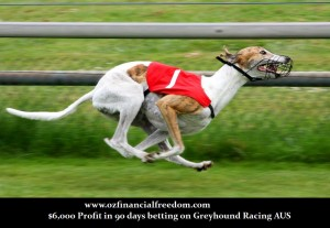 Amazing Greyhound Racing System Profits $6,000 in 90 days
